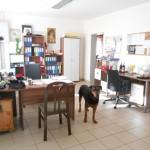Eingangsbereich und Büro