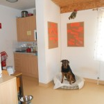 kleiner Küchenbereich -dient seit längerer Zeit auch immer einem unserer Hunde als Aufenthaltsraum.